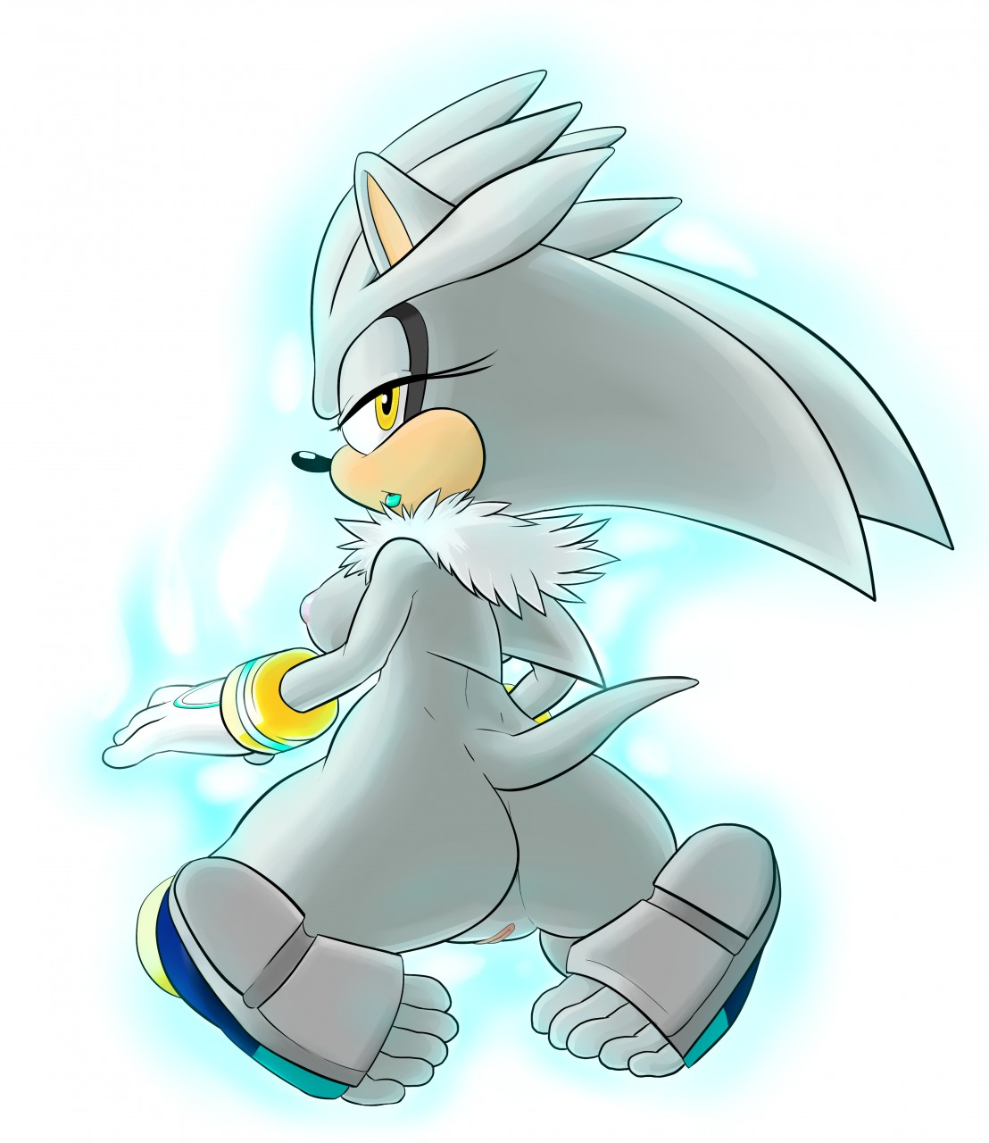 a human as hedgehog the silver Rules of survival